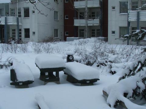 Iarna Helsinki