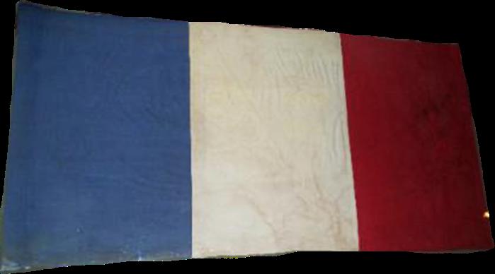 Steag al Marii Adunări Naționale de la Blaj folosit de Andrei Șaguna (avers), 1848