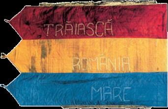 Steagul de la Darnița (revers), 1918