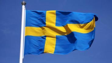 Steag suedez