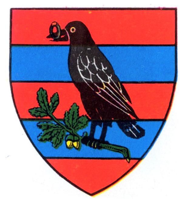 tinutul-timis-1938-mica