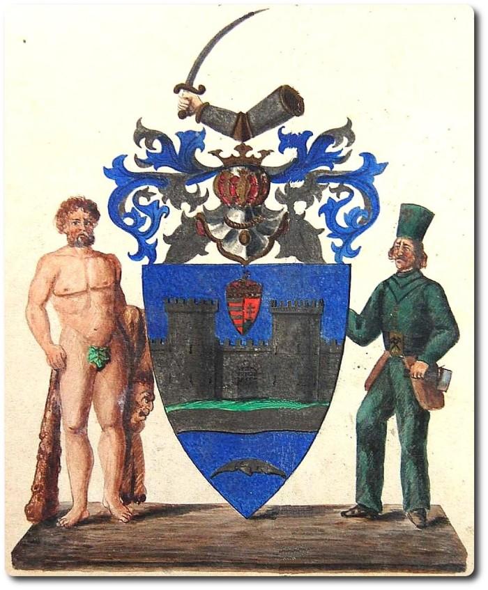 comitatul-severin-1873-medie